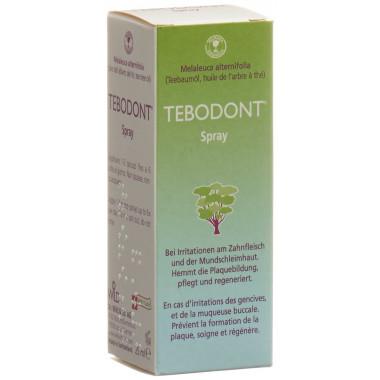Tebodont Spray