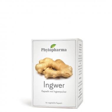Phytopharma Ingwer Kapsel 365 mg